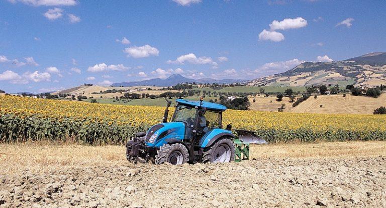 Come valutare l'Impresa agricola: Forma giuridica e tipologia dell'impresa-agricola
